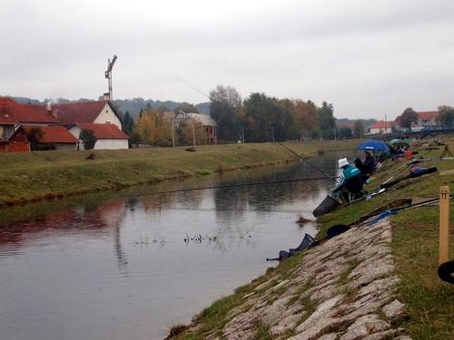 OSR TIMOK: Udruženjsko takmičenje u lovu ribe udicom na plovak