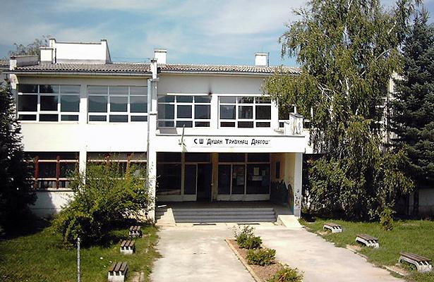 Srednja skola Svrljig