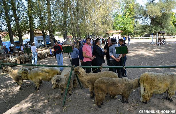 Sajam poljoprivrede: Svrljižanima najveći broj nagrada