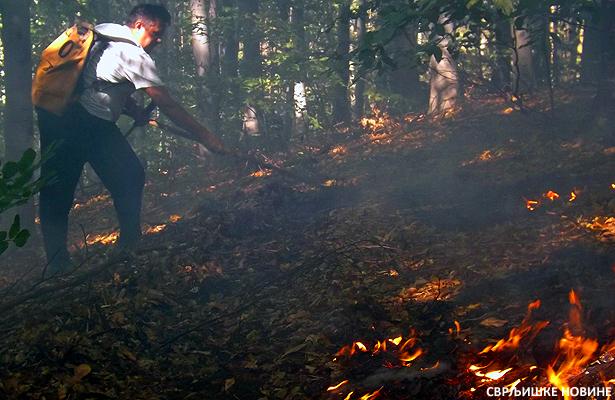 Požari i u svrljiškom kraju