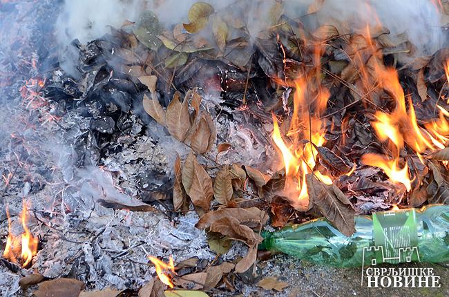 Požar u Svrljigu