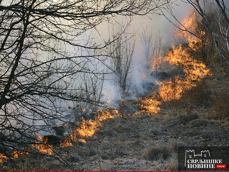 Kazna za spaljivanje na otvorenom i do 300.000 dinara