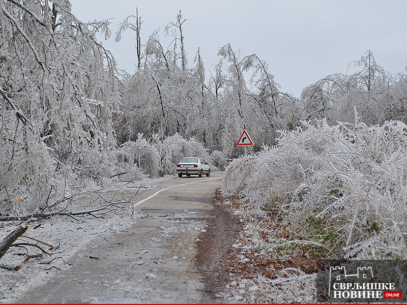 Ledene kiše pričinile višedecenijsku štetu