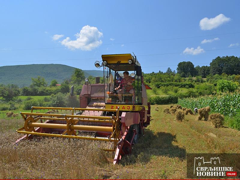 Konkurs za poljoprivrednike sa teritorije opštine Svrljig