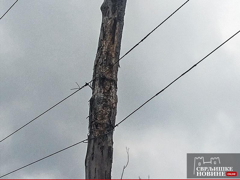 Pogledajte kako su vezane bandere u Lukovu