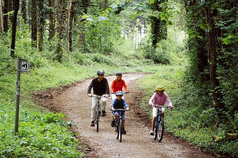 Canaston woods cyclingwtmk