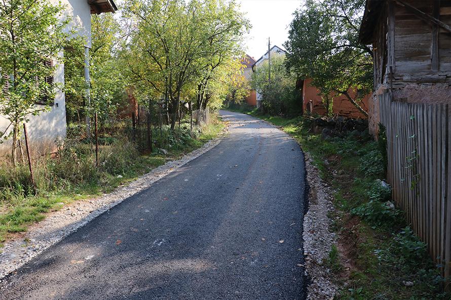 put u selu popsica