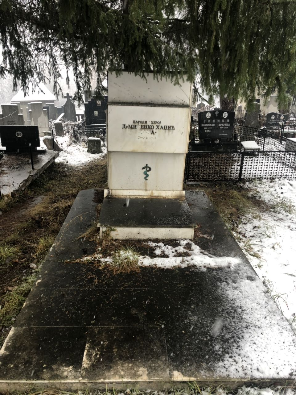 Pogledajte kako danas izgleda spomenik dr Milenku Hadžiću (FOTO)