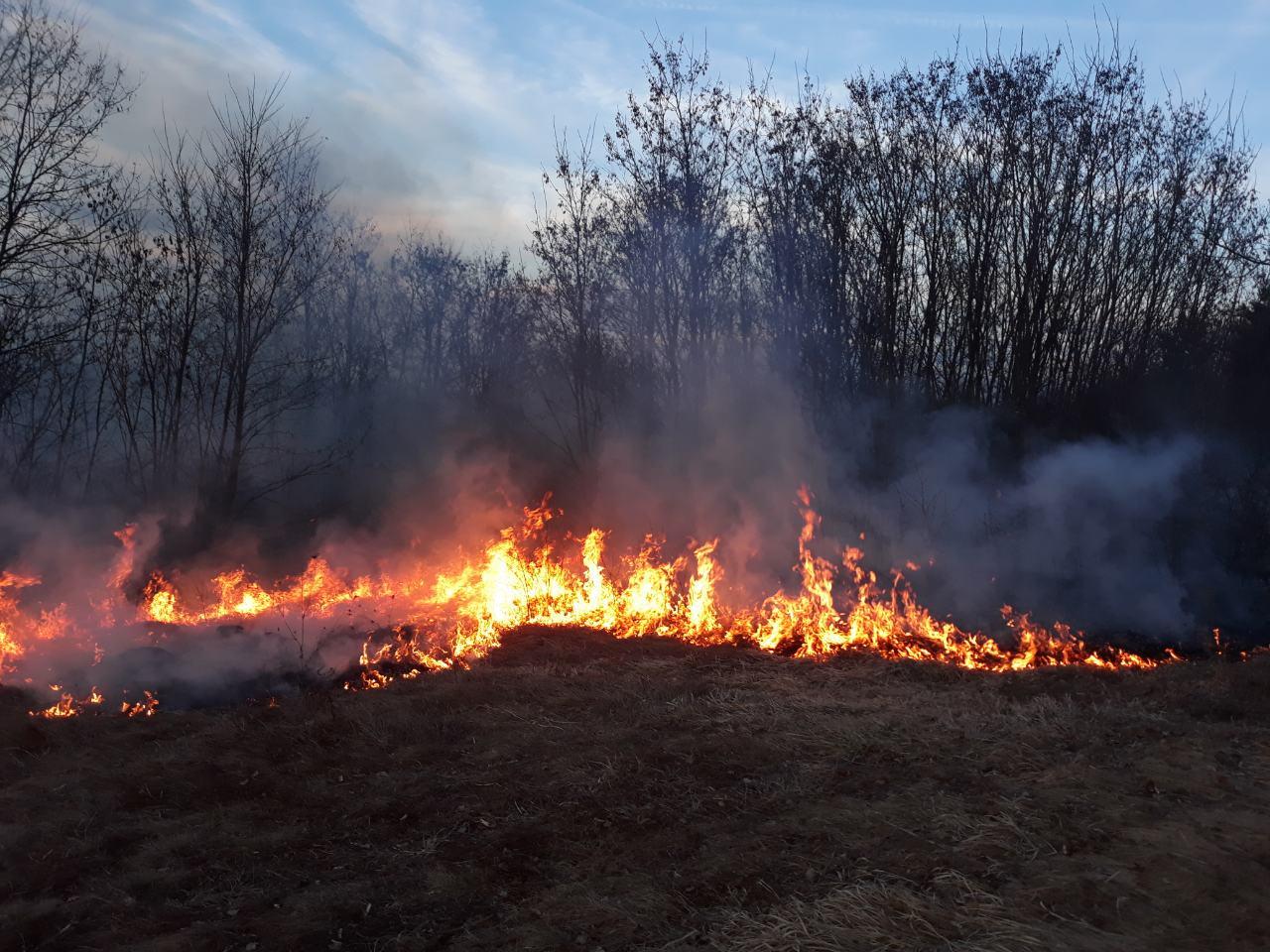 Foto: Z.M. / M.M. / Požar u Đurincu