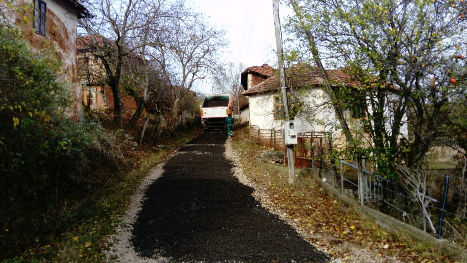 Labukovo, put prema selu, foto: M.S.