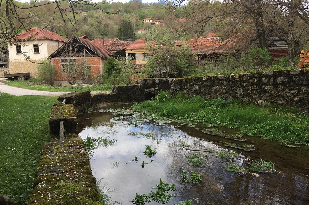 Selo Gulijan, centar, foto: Svrljiške novine