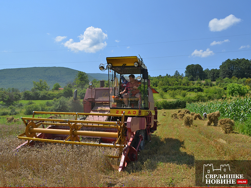 Vlada odlučila o podsticajima u poljoprivredi, najviše nedovoljno razvijenim