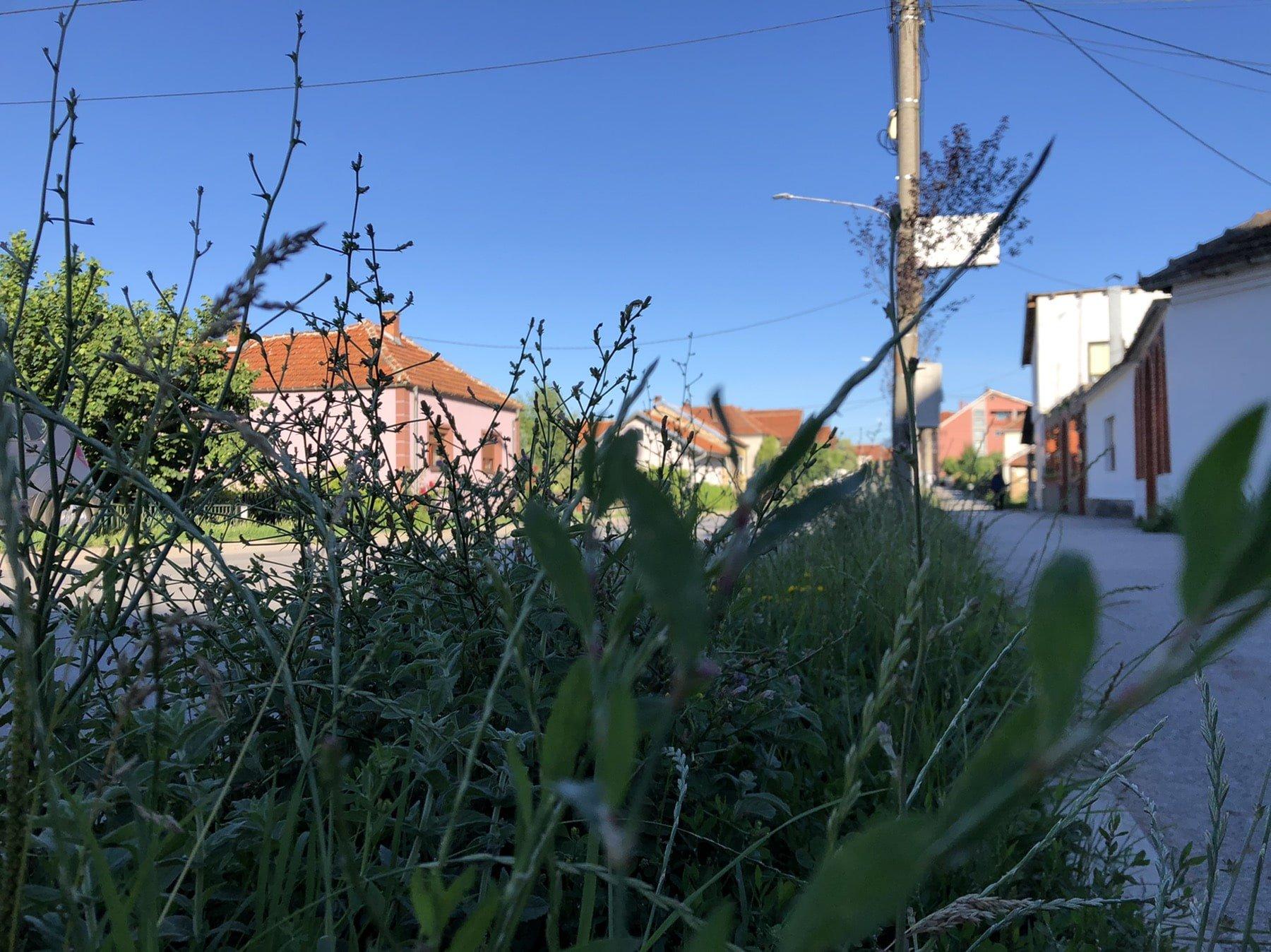 Neophodno uređenje zelene površine u ulici Vase Albanca