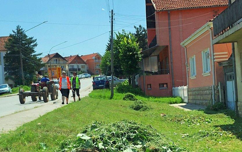 Uređenje zelenila u gradu (FOTO)
