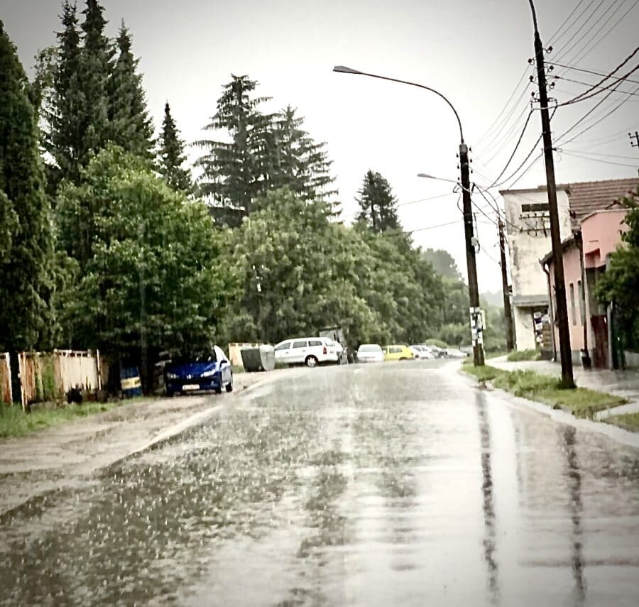 Kišovito, foto: Redakcija