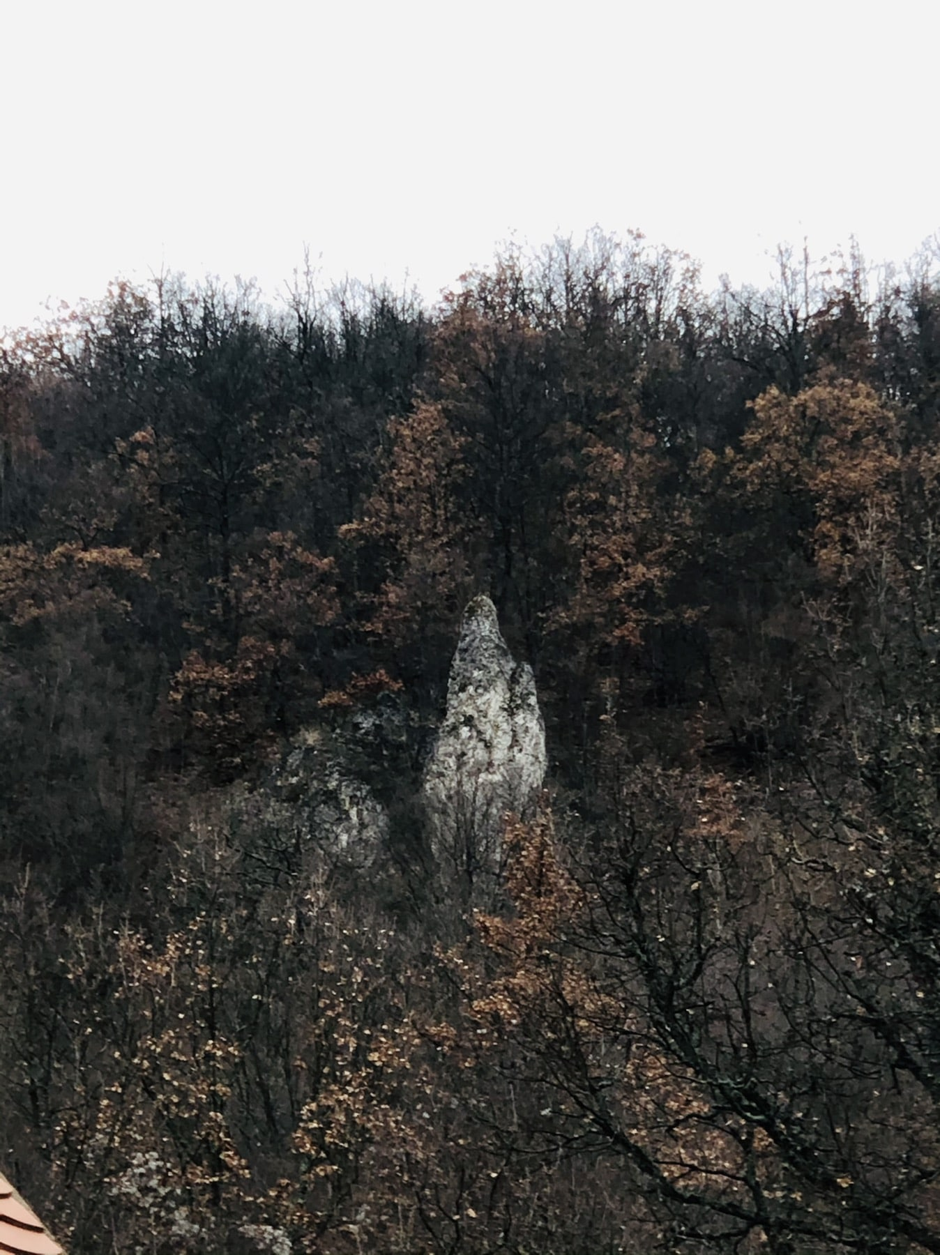 Stena nalik Bogorodici, foto: M.M.