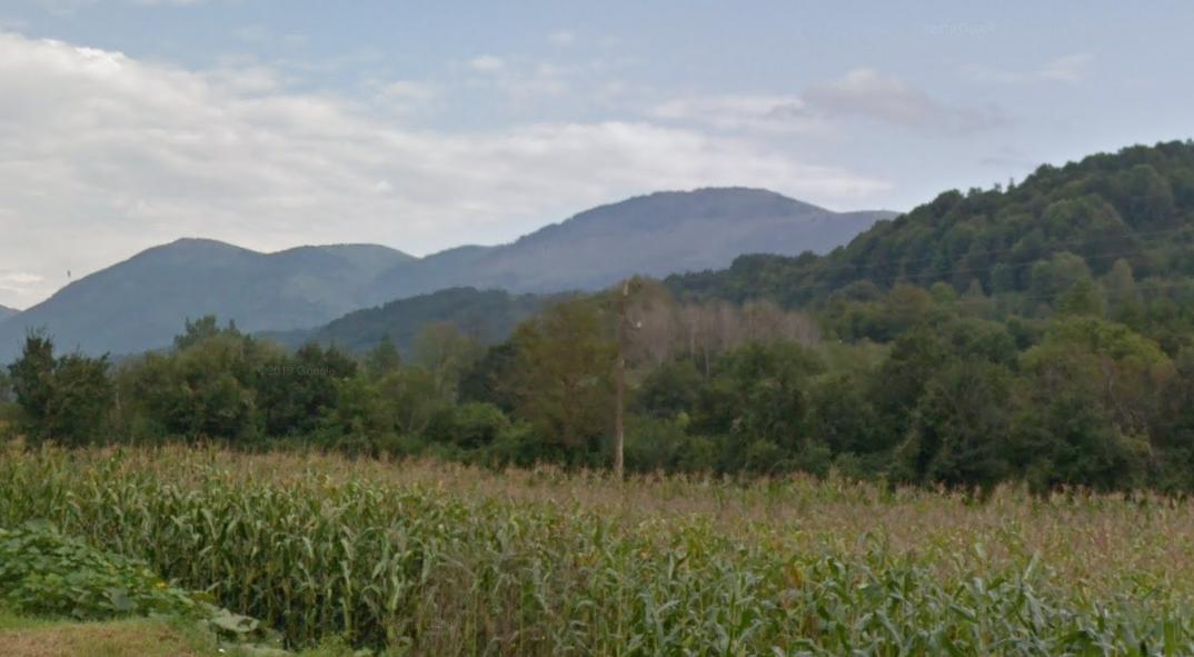 Svrljiške planine, foto: Google