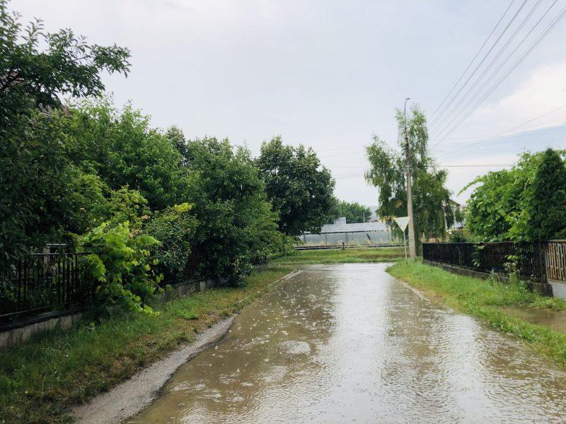 Ulica Srećkova, foto: M.M.