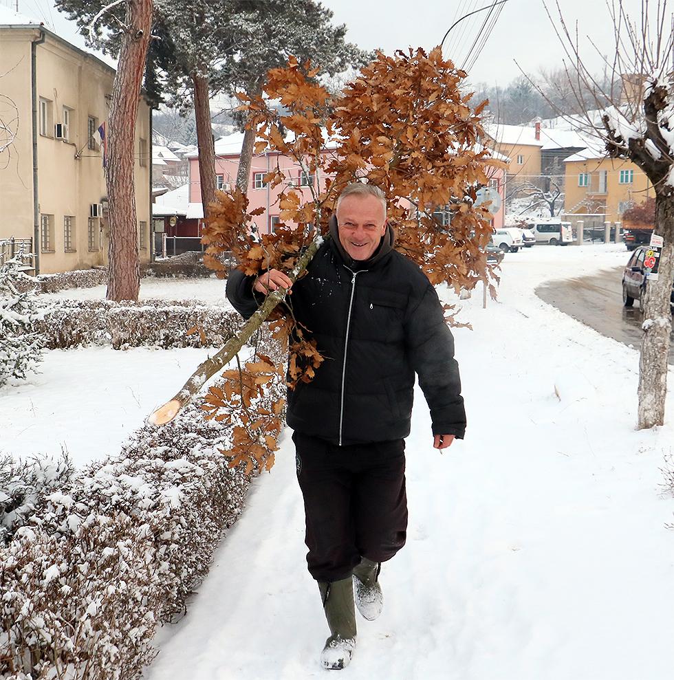 Profesor Bojan Petrović, badnjak krenuo ka Srednjoj školi, foto: M.M.