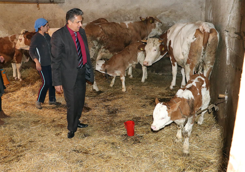Miletić obilazi poljoprivrednike, foto: M. Miladinović, Svrljiške novine