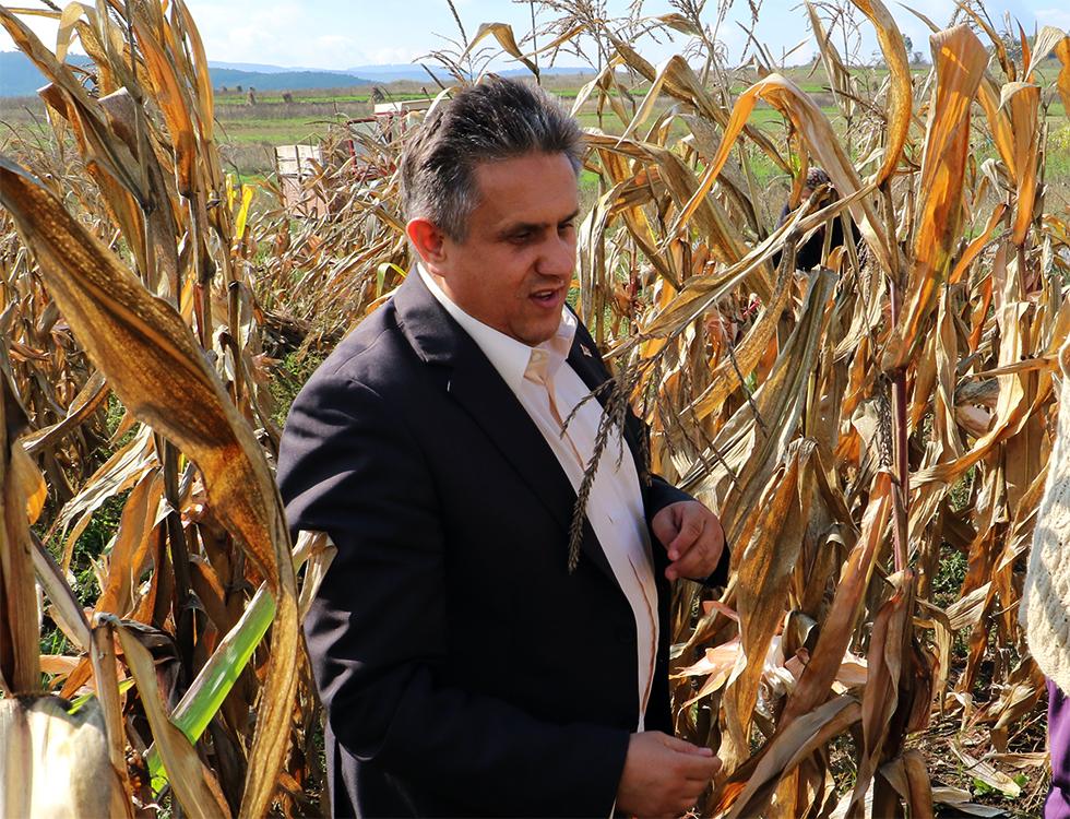 Miletić INSISTIRA da Pravilnik o podsticajima u stočarstvu za kvalitetna priplodna grla BUDE IZMENJEN