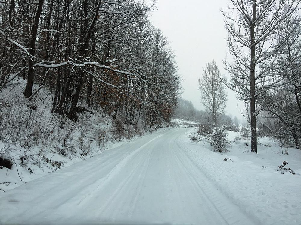 Svrljig pod snegom! Zavejani putevi i sela!