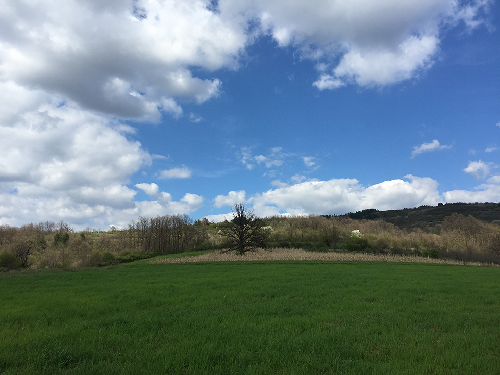 Netaknuta i čista priroda Vlahova, raj za turiste