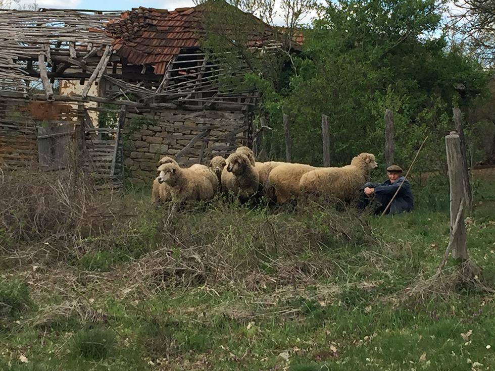 Selo Vlahovo 03