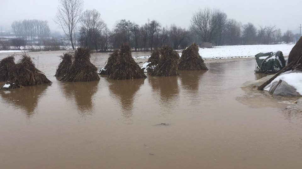 Izlio se Svrljiški Timok – poplavljena pojedina naselja (FOTO)