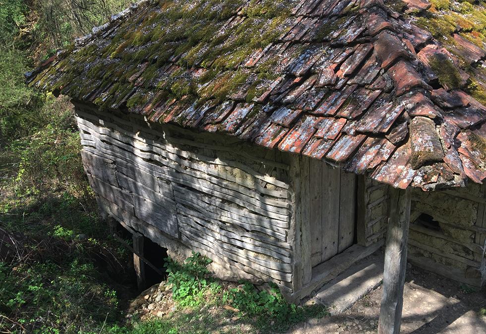 Stara vodenica, mlin u selu Beloinje, foto: M.S. / Svrljiške novine
