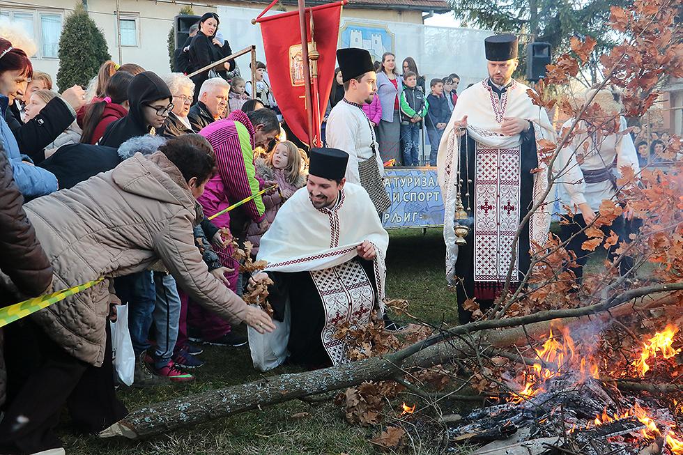 Badnje drvo, foto: M. Miladinović, Svrljiške novine