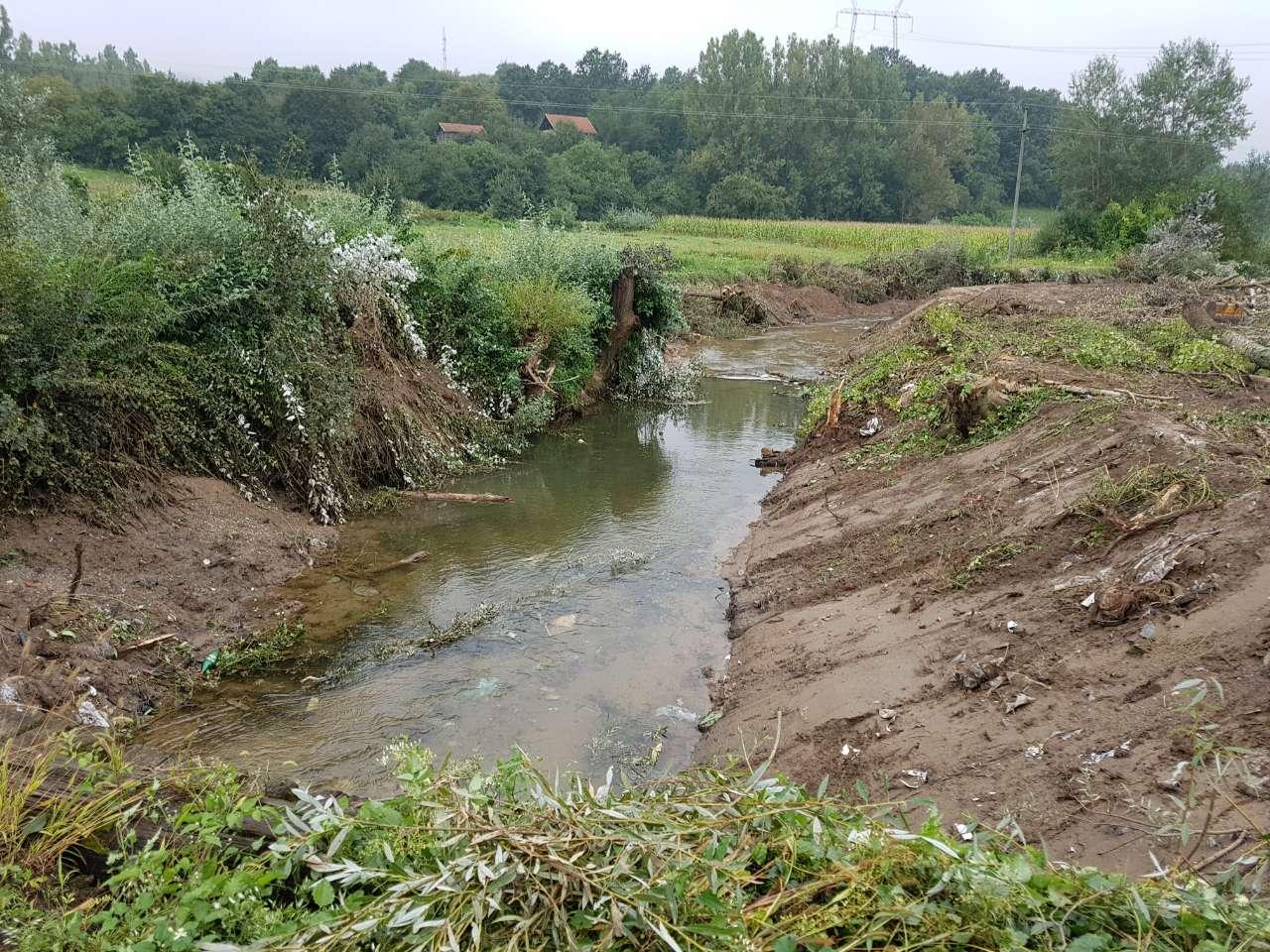 Čišćenje korita reke Svrljiški Timok