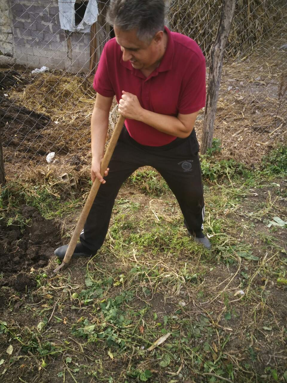 Narodni poslanik Milija Miletić rilja na svom imanju