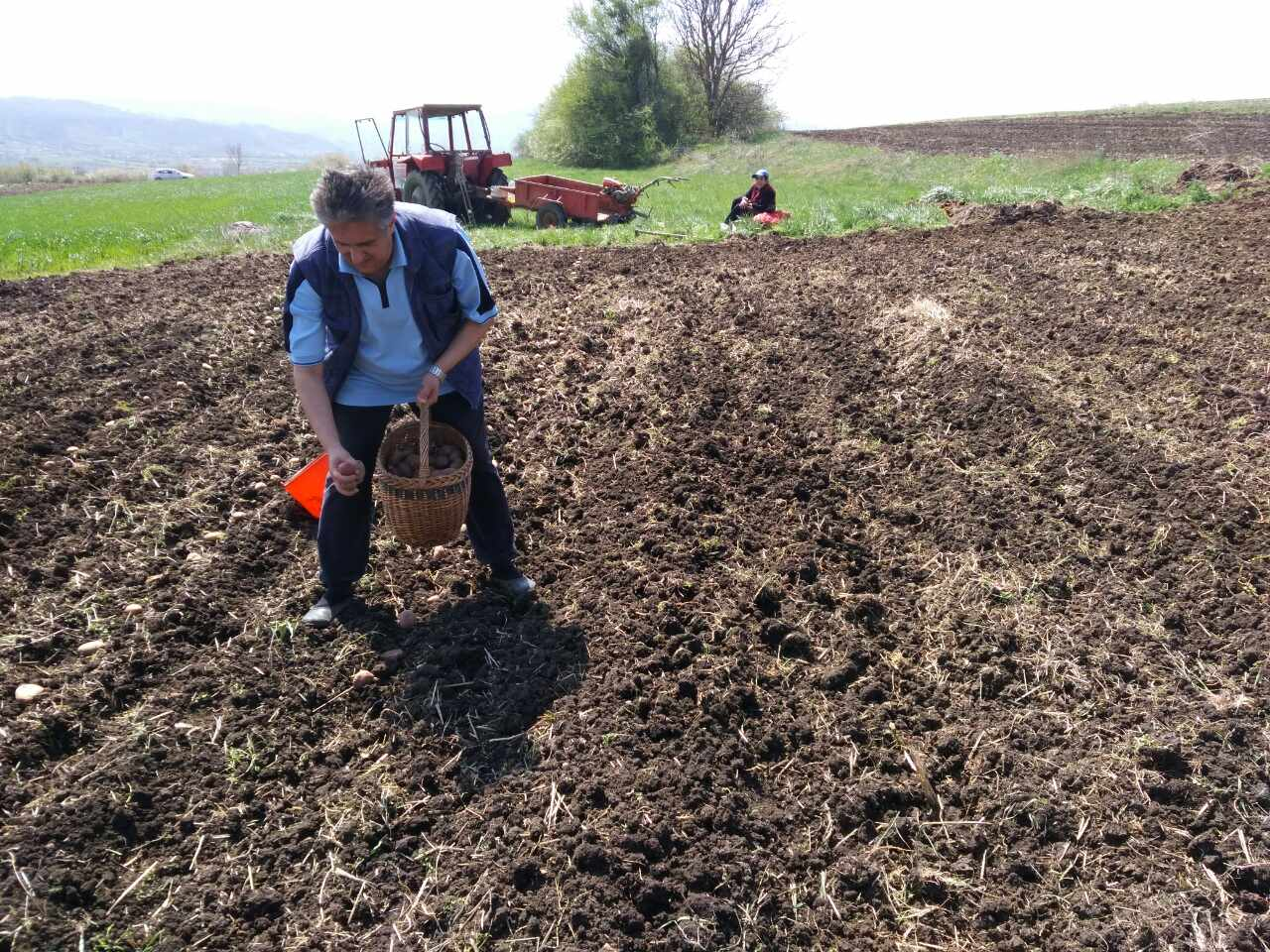 Miletić se ne stidi seoskih poslova, foto: M.M.