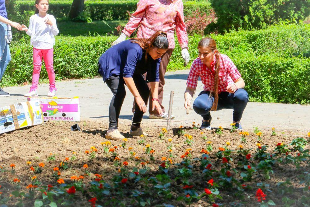 Sadnja cveća i ulepšavanje parka