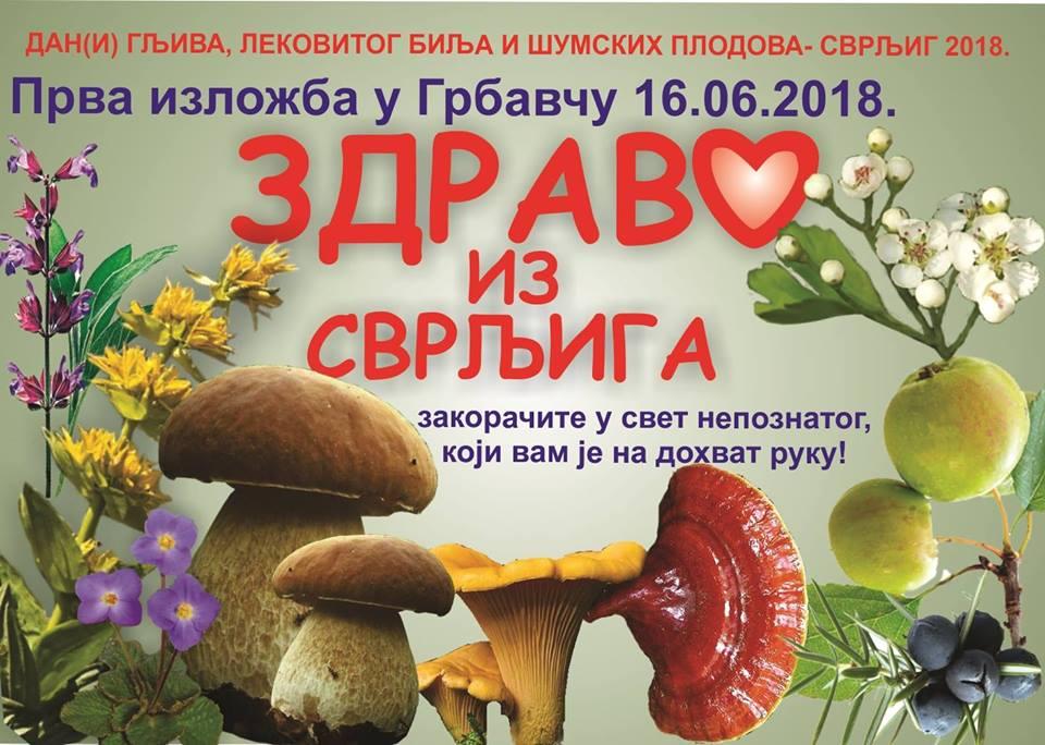 """Izložba """"Dan(i) gljiva, lekovitog bilja i šumskih plodova – Svrljig 2018."""""""